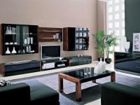 Корпусная мебель для гостиной — 83 фото грамотного распределения свободного пространства