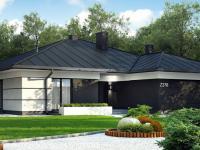 Одноэтажные дома — лучшие дизайнерские идеи и советы по выбору проекта одноэтажного частного дома (100 фото)